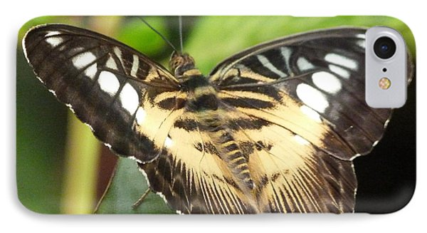 IPhone Case featuring the photograph Clipper Butterfly by Lynn Bolt