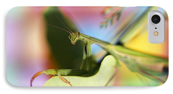 Close-up Of Praying Mantis IPhone Case by Natural Selection Craig Tuttle