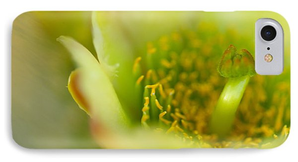 Opuntia Bigelovii iPhone 7 Case - Close View Of A Teddy by Raul Touzon
