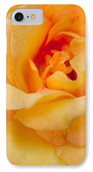 Closeup Yellow Rose Phone Case by Atiketta Sangasaeng