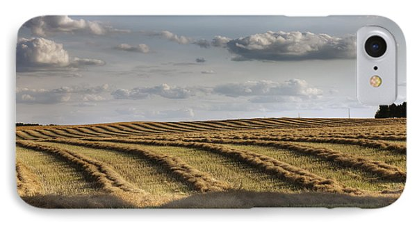 Clouds Over Canola Field On Farm Phone Case by Dan Jurak