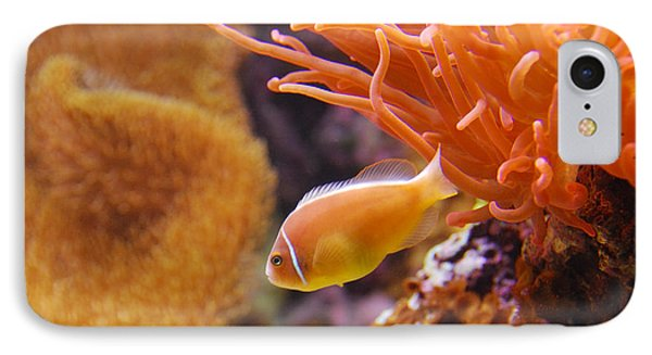 Clown Fish Phone Case by Anthony Citro