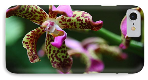 Clown Orchid Phone Case by Paul Slebodnick