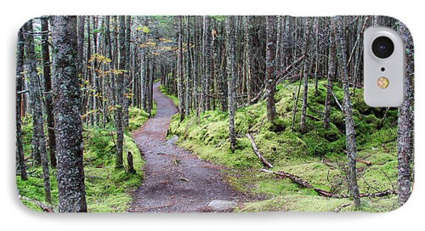Coastal Trail At Quoddy Head State Park IPhone Case by Jack Schultz