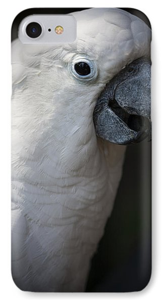 Cockatoo Phone Case by Zoe Ferrie