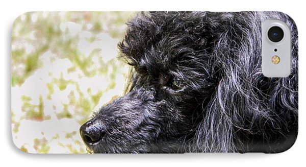 IPhone Case featuring the photograph Coco Poodle by Ester  Rogers