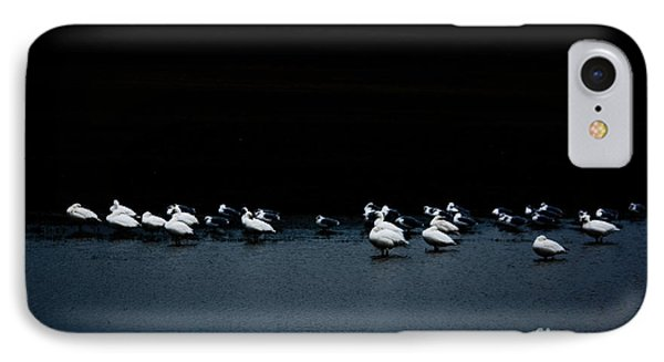 Cold Duck Phone Case by Lisa Holmgreen