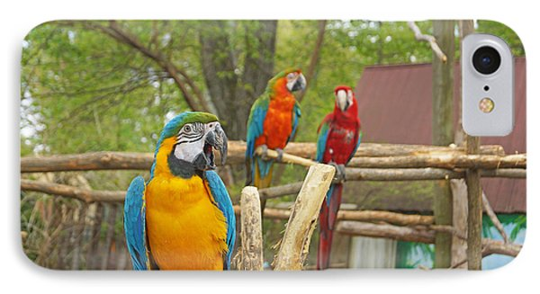 Color Of Parrots  IPhone Case by J Jaiam