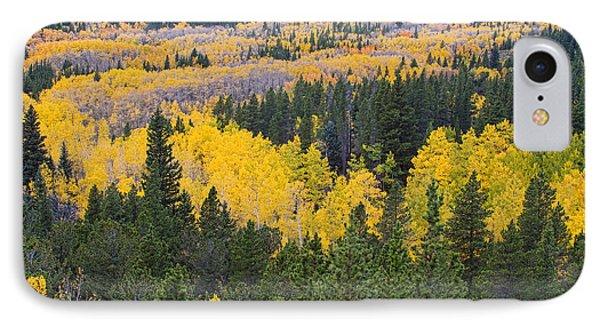 Colorado Autumn Aspens Boulder County  Phone Case by James BO  Insogna