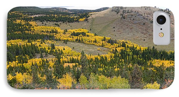 Colorado Autumn Aspens Colors Phone Case by James BO  Insogna