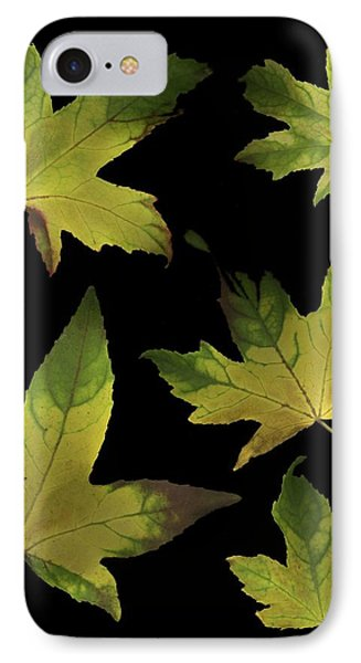 Colorful Autumn Leaves Phone Case by Deddeda