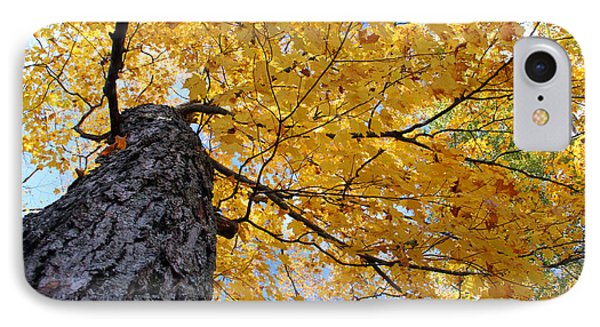 Colorful Canopy 130 IPhone Case by Mark J Seefeldt