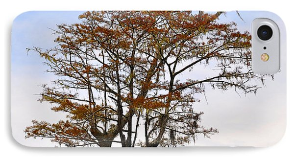 Colorful Cypress Phone Case by Al Powell Photography USA
