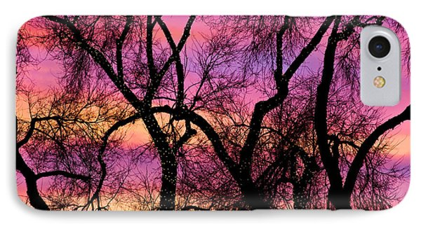 Colorful Silhouetted Trees 21 Phone Case by James BO  Insogna