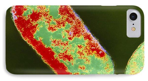 Coloured Tem Of Shigella Sp. Bacteria Phone Case by London School Of Hygiene & Tropical Medicine