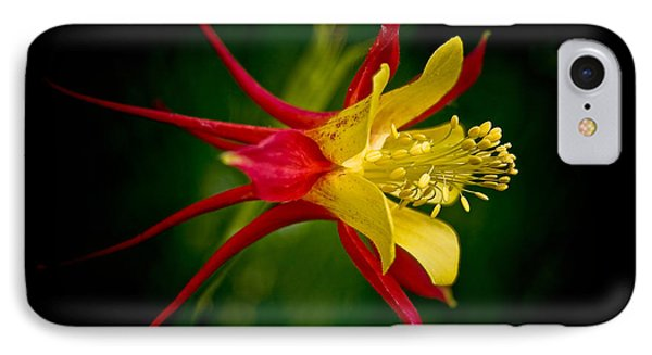 Columbine IPhone Case by Larry Carr