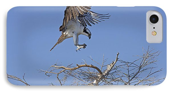 IPhone Case featuring the photograph Coming In For A Landing by Anne Rodkin