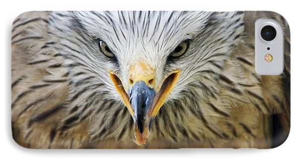 Common Buzzard Phone Case by Chris Hellier