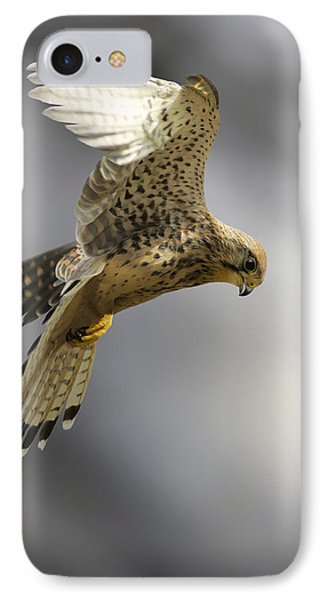 Common Kestrel Hunting Phone Case by Linda Wright