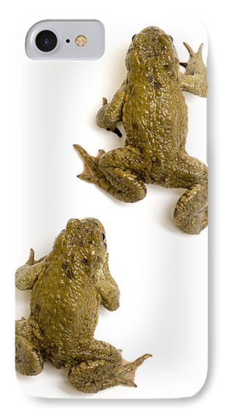 Common Toad Phone Case by Mark Bowler and Photo Researchers