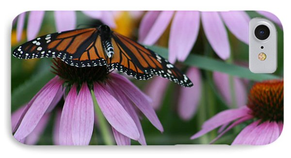 IPhone Case featuring the photograph Cone Flowers And Monarch Butterfly by Kay Novy
