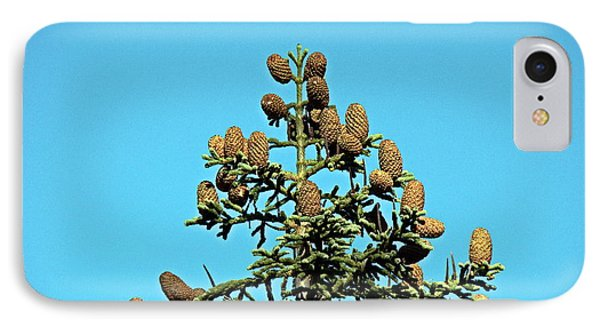 IPhone Case featuring the photograph Cones by Nick Kloepping