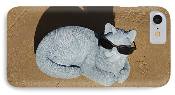 Cool Cat IPhone Case by Aimee L Maher Photography and Art Visit ALMGallerydotcom