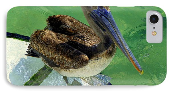 Cool Footed Pelican Phone Case by Karen Wiles