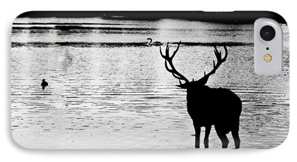 IPhone Case featuring the photograph Cooling Off Deer by Maj Seda