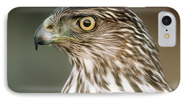 IPhone Case featuring the photograph Cooper's Hawk by Doug Herr