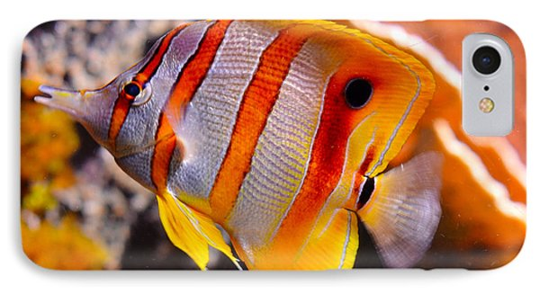 Copperband Butterfly Fish Phone Case by Pravine Chester