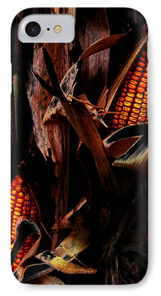 Corn Stalks Phone Case by Rachel Christine Nowicki