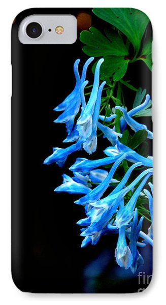 Corydalis  IPhone Case by Tanya  Searcy