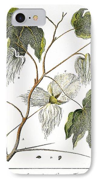 Cotton Plant, 1796 Phone Case by Granger