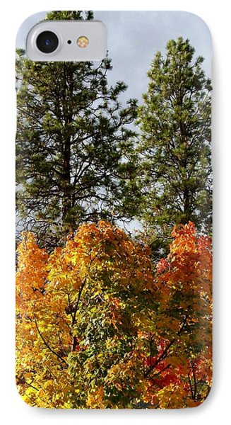 Country Color 24 Phone Case by Will Borden