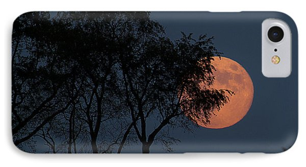 Country Moon  Phone Case by Betsy Knapp