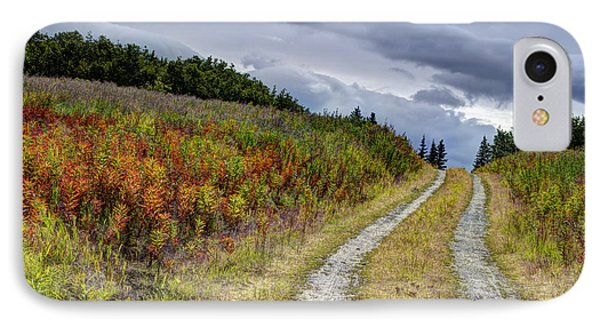 Country Road In Fall IPhone Case by Michele Cornelius