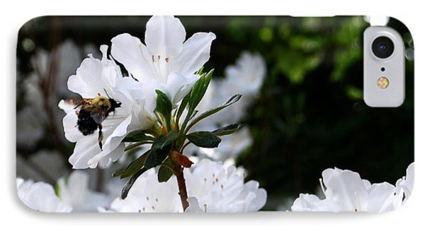Covered In Pollen A Bee At Work IPhone Case by Linda Mesibov