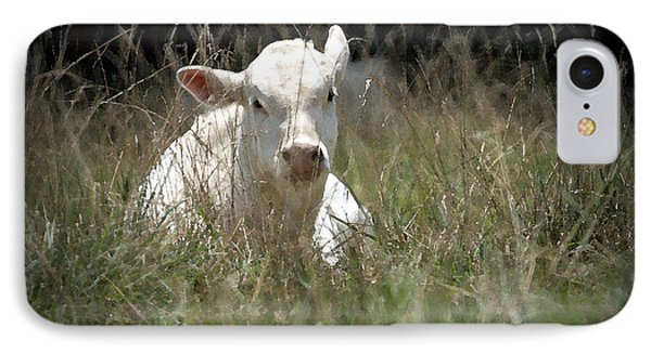 Cow's Meadow Phone Case by Karol Livote
