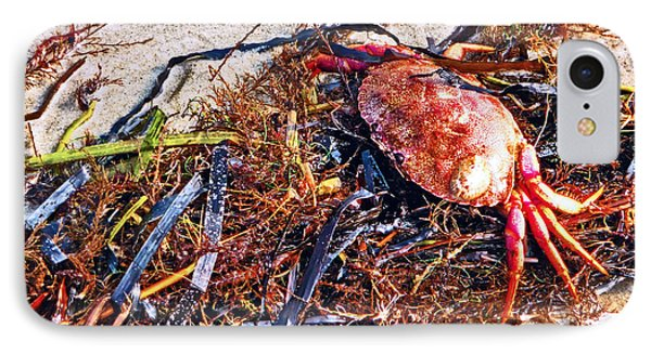IPhone Case featuring the photograph Crab Boil by William Fields