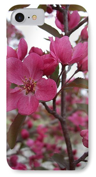 Crabapple Pink IPhone Case by Rebecca Overton