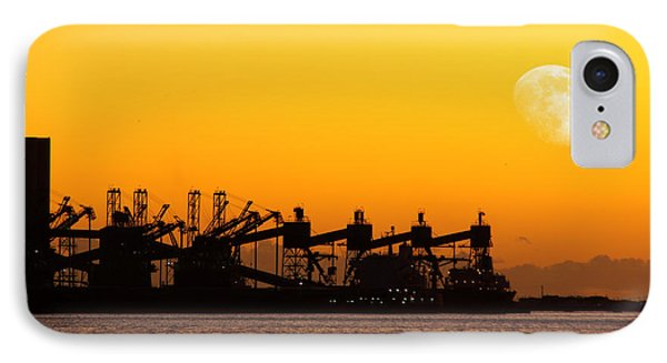 Cranes At Sunset Phone Case by Carlos Caetano