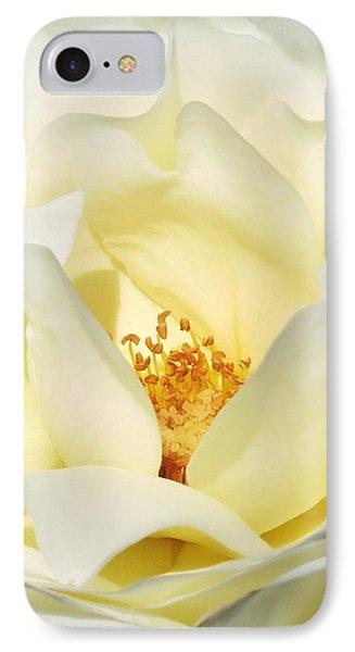 Cream Rose  IPhone Case by Rebecca Overton