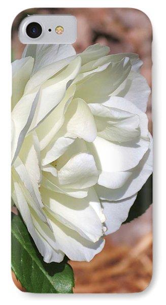 Cream White Rose  IPhone Case by Rebecca Overton