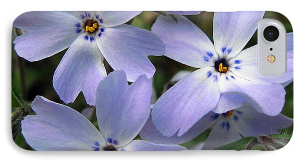 IPhone Case featuring the photograph Creeping Phlox by J McCombie