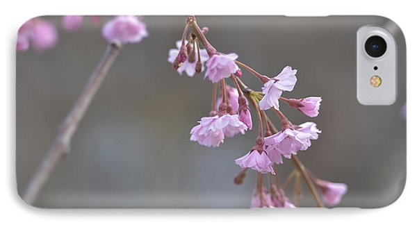 IPhone Case featuring the photograph Crepe Myrtle by Lisa Phillips