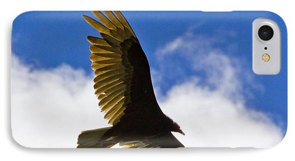 Crested Caracara Phone Case by Roger Wedegis