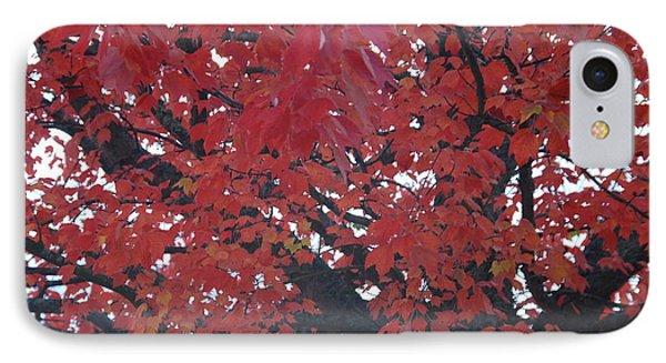 Crimson Leaves IPhone Case