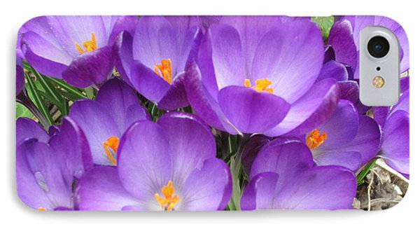 IPhone Case featuring the photograph Crocus by Laurianna Taylor