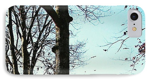IPhone Case featuring the photograph Crows In For Landing by Pamela Hyde Wilson